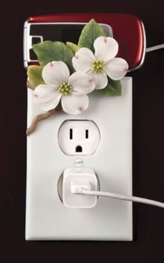 Dogwood Hand Painted Electric Outlet Cover & Cell Phone Holder By Ibis & Orchid Design Collection Ibis & Orchid http://www.amazon.com/dp/B00420IWE0/ref=cm_sw_r_pi_dp_DyEEub1K7X98Q