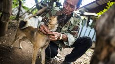 Thai police are ramping up efforts to slow the trafficking of dogs who are being captured and killed for their meat and skin.
