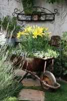 Réfléchissez-y à deux fois avant de jeter votre vieille brouette toute rouillée... Elle peut se transformer en une jolie jardinière au look vintage !