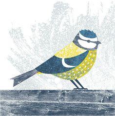 Birds - Kate McLelland Illustration