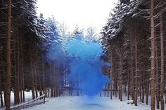 I'm strangely attracted to Filippo Minelli's ongoing colored smoke bomb series, Silence/Shapes. Beautiful, no? I think he captured 'loud silence' to perfection. {Images via I Do Art} Viborg, Claude Monet, Vincent Van Gogh, Photography For Sale, Art Photography, Movement Photography, Instalation Art, Colored Smoke, Photo D Art
