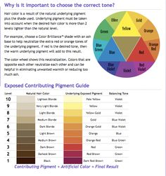 The Level System Hair Levels And Undertones  Cosmetology Charts Amp Refe