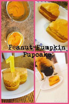 Single Post - Dog Birthday Cake - first birthday cake-Erster Geburtstagskuchen Dog Cake Recipes, Dog Treat Recipes, Dog Food Recipes, Baby Recipes, Dog Pumpkin, Pumpkin Dog Cake Recipe, Easy Dog Cake Recipe, No Bake Granola Bars, Puppy Cake