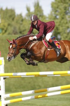 "I love how the horse just looks so determined and is like ""we totally got this!"" And the rider is like "" I totally don't got this today.."""