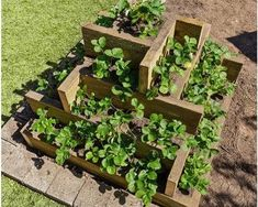 Creating DIY raised garden beds, or garden boxes, in your backyard is a great way Tiered Planter, Wooden Garden Planters, Tiered Garden, Diy Planters, Planter Boxes, Strawberry Beds, Strawberry Garden, Strawberry Plants, Grow Strawberries
