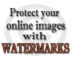 Blogging Tips- learn how to protect your online images