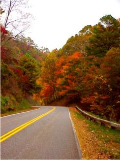 road to nowhere  Bryson city nc