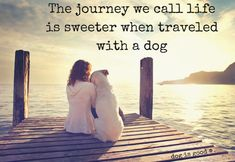 The journey we call life is sweeter when traveled with a dog