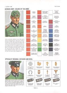 Plate VI: German Army: Colors of the Arms Specialist Insignia: (Officers and NCOs) Army Ranks, Military Ranks, Military Armor, Military Insignia, Military History, Ww2 Uniforms, German Uniforms, German Soldiers Ww2, German Army