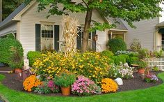 Some potted mums, black-eyed susans, and a bunch of corn stalks make this planter look beautifull Fall-ish!