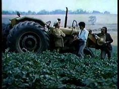 Filme ...E A Vaca Foi Para O Brejo 1981 Completo ( Cinema Nacional ) - YouTube