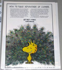 Discover Peanuts collectible Metlife Promos featuring Snoopy, Woodstock, Charlie Brown, and the whole Peanuts Gang from the comic by Charles M. Metlife Snoopy, Peanuts Gang, Print Ads, Woodstock, Vintage Ads, Charlie Brown, Take That, Peacocks, Comics