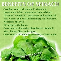 Natural plant based diet: health benefits of spinach Healthy Tips, How To Stay Healthy, Healthy Foods, Eating Healthy, Healthy Habits, Healthy Recipes, Health And Nutrition, Health And Wellness, Holistic Nutrition
