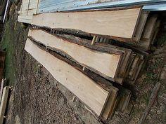 Eiche Stieleiche Bohlen Bretter Stammware unbesäumt Zaun sehr schön rustikal in Business & Industrie, Holzbearbeitung & Tischlerei, Holz & Holzwerkstoffe | eBay