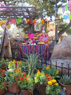 Outside The Mexican Restaurant Rancho Del Zocalo At Disneyland Decorated For