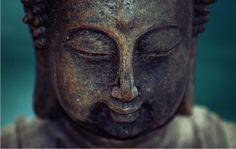 Awakening Sensitivity & Silence in Meditation