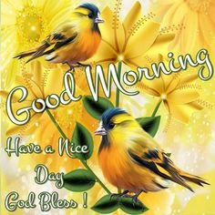 ♥  Good Morning! Wishing you all a Beautiful day, Enjoy, Ly all ♥