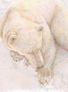 """Centering"" - Barbara Stone, Colored Pencil Art - Polar Bears"