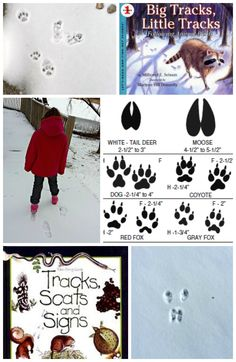 Great books and track guides for a fun outdoor adventure -- You can do this in the snow, sand or mud w/the kids!