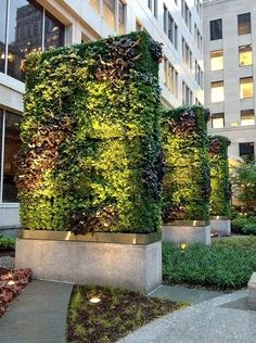 We love taking inspiration from commercial installations and adapting them to the home garden. This would make a fabulous divider to create privacy and even absorb noise.