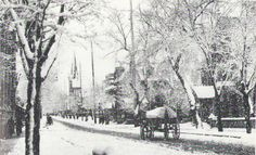 Metcalfe St. on a snowy day, Ottawa, ON, 1907