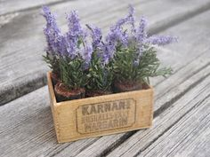 Dollhouse Miniatures : Lavender  Share, Repin, Comment - Thanks!