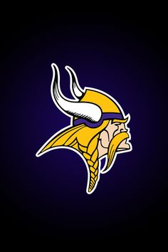 The Minnesota Vikings have always been my favorite football team. Football is also my favorite sport.