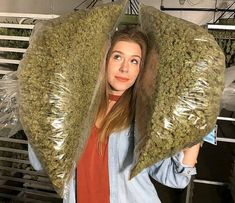 Caption this dope pic of for an entry to my giveaway! Everyone who plays along will be added to a numbered list & I'll randomly pick a winning number in a live feed when I hit. Ganja, Weed Shop, Cbd Oil For Sale, 420 Girls, Stoner Girl, Buy Weed Online, Cannabis Oil, Smoking Weed, Hemp Oil