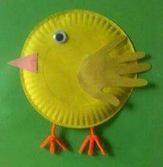 Pollito, chicken
