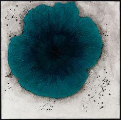 Blue Poppy  by Lynn Basa