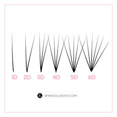 Eyelash Extension Training, Eyelash Extension Supplies, Best Lash Extensions, Volume Eyelash Extensions, Eyelash Studio, Lash Quotes, Lash Room, House Of Beauty, Best Lashes