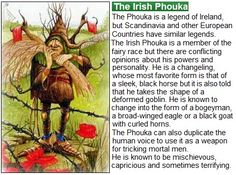 the irish phouka (pooka)