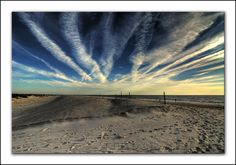 Assateague Island, most favorite comforting place. Also where my husband and I got married. Love.