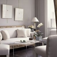 Living room with grey walls, white moldings and baseboards and a traditional sofa combined with a lucite coffee table designed by Spada Interior Design Portfolios, Top Interior Designers, Classic Interior, Best Interior, Interior Photo, Gray Interior, Beautiful Interiors, Beautiful Homes, House Beautiful
