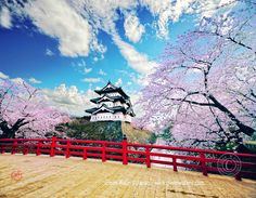 Hirosaki Castle, Japan...the first place we visited when we moved to Misawa...it's BREATHTAKING!