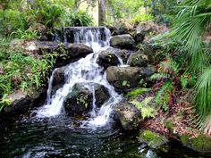 This One Easy Hike In Florida Will Lead You Someplace Unforgettable RSSP - Only in your state site