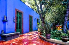Frida + Diego's garden ... that blue keeps those evil spirits out.