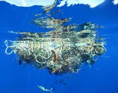 Oceans of trash… Literally - A new survey estimates that the world's oceans contain over 250,000 tons of trash. This is about ten times more than other recent studies suggested. Click pin to read the article.