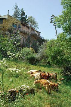 Ein Kerem, Israel