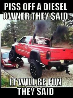 Rednecks insurence