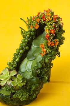 botanical shoe with kalanchoe  1, Françoise Weeks