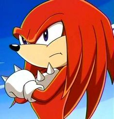 Yes! At one point, I was a huge Sonic X fan.  Knuckles became my favorite as he was a more vulnerable and gullible character while Sonic was just cool and perfect all around.  He had more flaws and imperfections as a character in the series, which was nice to see at times.    Google Image Result for http://www.absoluteanime.com/sonic_x/knuckles.jpg