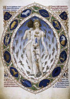 «L'uomo astrologico»- Fratelli Limbourg -1413-1416. miniatura dalle Trés riches heures du due de Berry Chantilly. Musée Condé Lungo il margine della miniatura, racchiusa come in una mandorla, le eleganti raffigurazioni dell'oroscopo decorano un preciso e meticoloso calendario perpetuo, unendo ancora una volta precisione e gusto per la fantasia. Pur nella fantasia dell'immagine, le figure dei due nudi abbinati rivelano una concreta struttura fisica e anatomica, conferendo alla miniatura una…