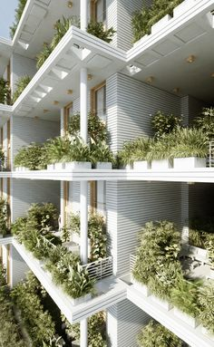 Penda projeta complexo residencial com jardins verticais na Índia Cortesia de Penda