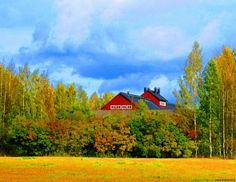 Picture of the Day September fall colours bursting in Helsinki! 30 September, Helsinki, 30th, Colours, Mountains, Fall, Nature, Pictures, Travel