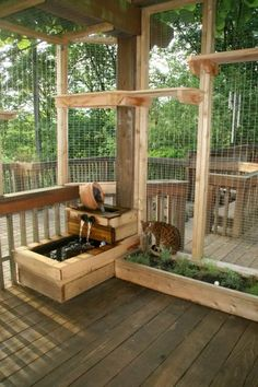 Cat Patio Ideas ` Cat Patio - Cat playground outdor - How to create a perfect outdoor play area Outdoor Cat Enclosure, Patio Enclosures, Cat Garden, Herb Garden, Balcony Garden, Garden Bed, Cat Run, Diy Patio, Patio Ideas