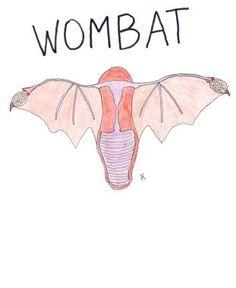 wombat womens t shirt stone robot enterprises printfectioncom
