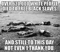 Some of my ancestors died fighting in the civil war to free slaves.