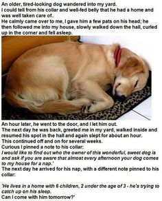 Not sure if this is true or not, but it's such a cute story either way.
