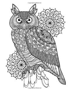 272 Best Owl Coloring Pages for Adults images | Owl